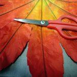 完全乾燥後、葉のフチをハサミでギザ切りします。切れ目を入れる→横にハサミを少しずらす→切れ目を入れる ・・・・ でギザができます